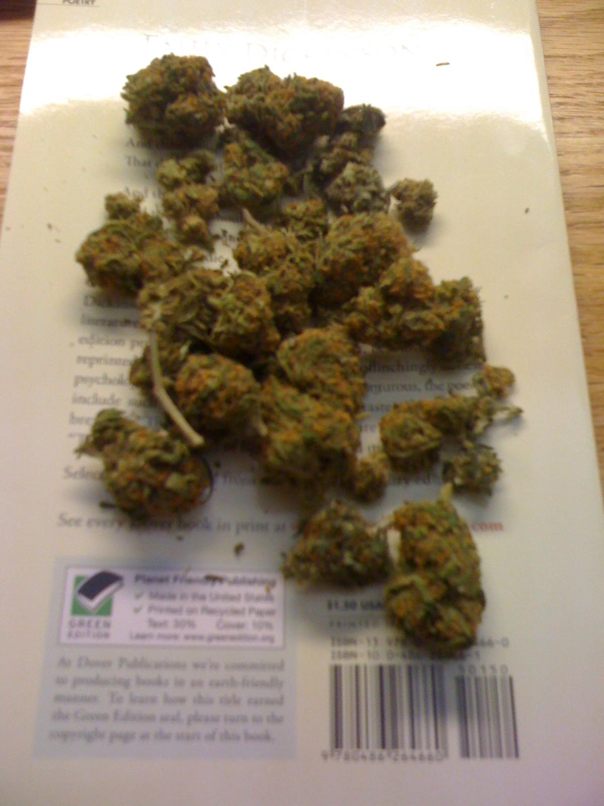 Lil Wayne Smoking ColorfulLil Wayne Smoking Colorful Weed